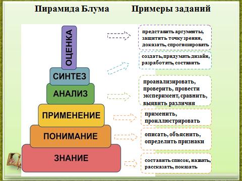 Девушка модель работы учителя по развитию функциональной грамотности учащихся таня деркач