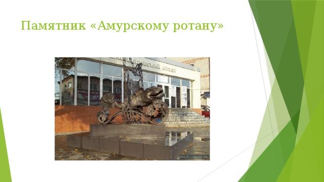 Памятник «Амурскому ротану»