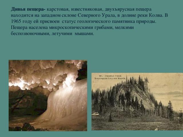 Дивья пещера- карстовая, известняковая, двухъярусная пещера находится на западном склоне Северного Урала, в долине реки Колва. В 1965 году ей присвоен статус геологического памятника природы. Пещера населена микроскопическими грибами, мелкими беспозвоночными, летучими мышами.