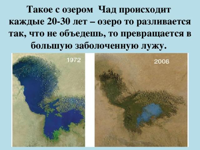 Такое с озером Чад происходит  каждые 20-30 лет – озеро то разливается так, что не объедешь, то превращается в большую заболоченную лужу.