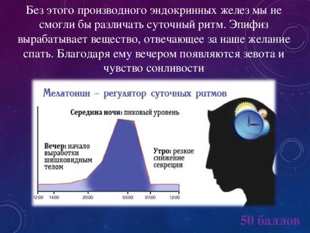 Без этого производного эндокринных желез мы не смогли бы различать суточный ритм. Эпифиз вырабатывает вещество, отвечающее за наше желание спать. Благодаря ему вечером появляются зевота и чувство сонливости 50 баллов