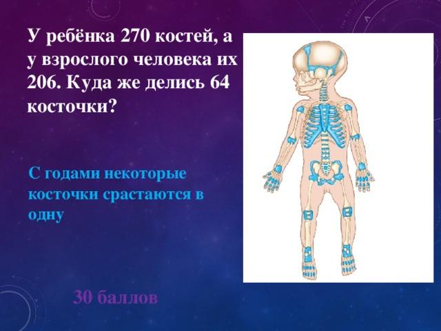 У ребёнка 270 костей, а у взрослого человека их 206. Куда же делись 64 косточки? С годами некоторые косточки срастаются в одну 30 баллов
