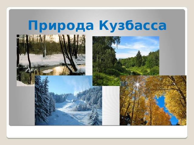 Природа Кузбасса
