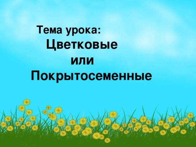 Тема урока:  Цветковые  или Покрытосеменные