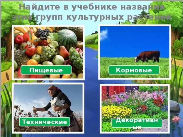 Найдите в учебнике названия  этих групп культурных растений Пищевые Кормовые Технические Декоративные