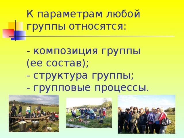 К параметрам любой группы относятся:   - композиция группы (ее состав);  - структура группы;  - групповые процессы.