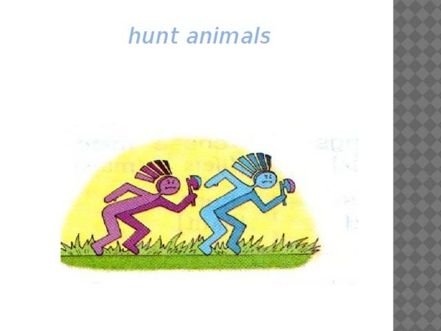 hunt animals