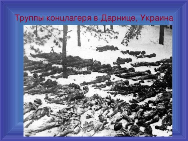 Труппы концлагеря в Дарнице, Украина