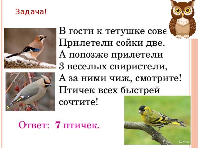 Задача! В гости к тетушке сове Прилетели сойки две. А попозже прилетели 3 веселых свиристели, А за ними чиж, смотрите! Птичек всех быстрей сочтите! Ответ: 7 птичек.