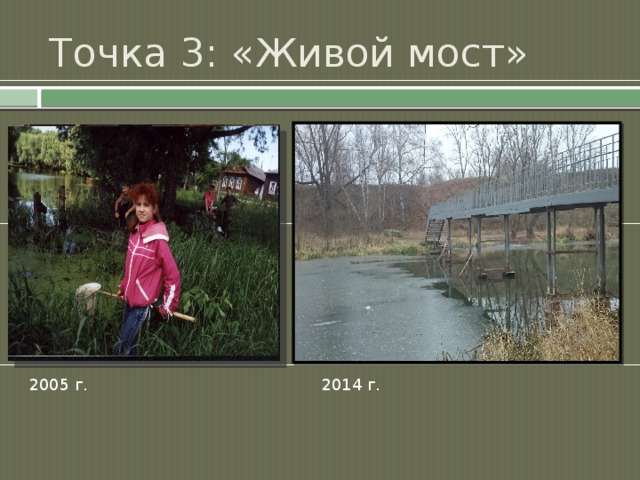 Точка 3: «Живой мост» 2005 г. 2014 г.