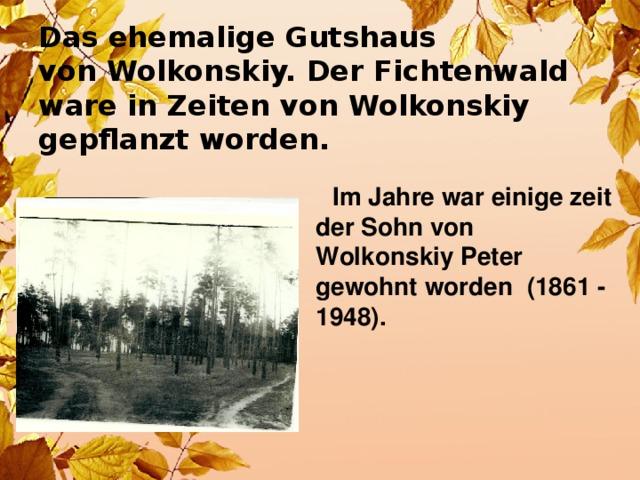Das ehemalige Gutshaus  von Wolkonskiy. Der Fichtenwald  ware in Zeiten von Wolkonskiy  gepflanzt worden.   Im Jahre war einige zeit der Sohn von Wolkonskiy Peter gewohnt worden (1861 - 1948).