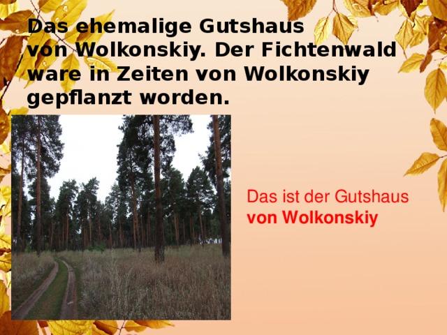 Das ehemalige Gutshaus  von Wolkonskiy. Der Fichtenwald  ware in Zeiten von Wolkonskiy  gepflanzt worden.  Das ist der Gutshaus von Wolkonskiy
