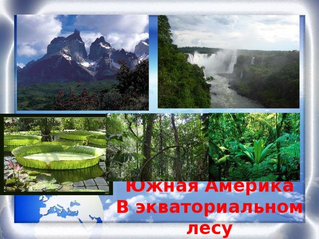 Южная Америка В экваториальном лесу