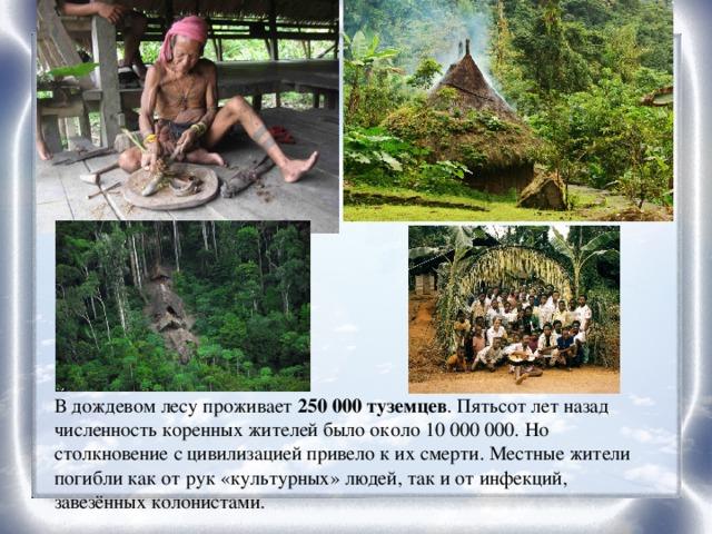 В дождевом лесу проживает 250 000 туземцев . Пятьсот лет назад численность коренных жителей было около 10 000 000. Но столкновение с цивилизацией привело к их смерти. Местные жители погибли как от рук «культурных» людей, так и от инфекций, завезённых колонистами.