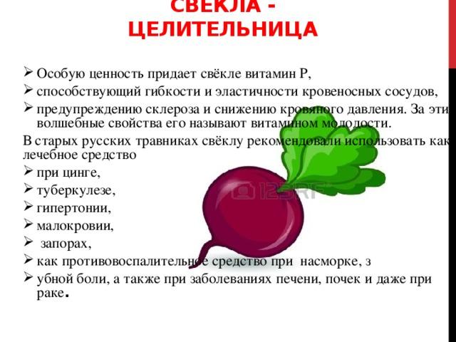 Свекла - целительница Особую ценность придает свёкле витамин Р, способствующий гибкости и эластичности кровеносных сосудов, предупреждению склероза и снижению кровяного давления. За эти волшебные свойства его называют витамином молодости. В старых русских травниках свёклу рекомендовали использовать как лечебное средство