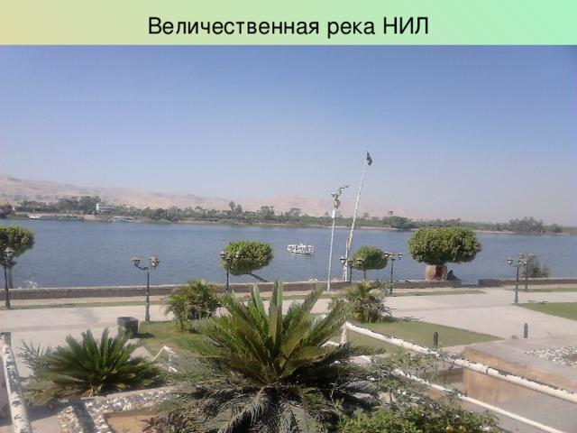 Величественная река НИЛ