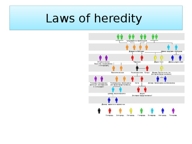 Laws of heredity
