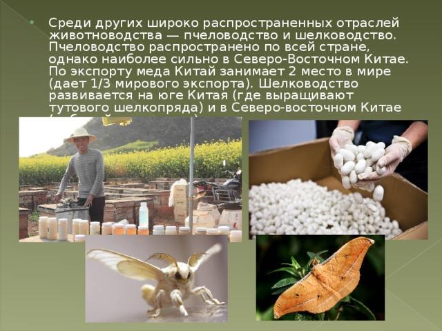 Среди других широко распространенных отраслей животноводства — пчеловодство и шелководство. Пчеловодство распространено по всей стране, однако наиболее сильно в Северо-Восточном Китае. По экспорту меда Китай занимает 2 место в мире (дает 1/3 мирового экспорта). Шелководство развивается на юге Китая (где выращивают тутового шелкопряда) и в Северо-восточном Китае (дубовый шелкопряд).