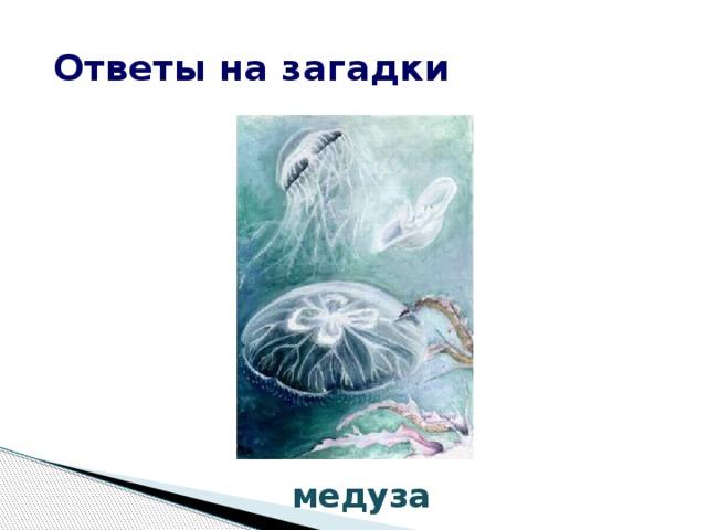 Ответы на загадки медуза