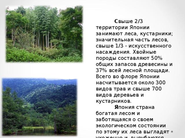 С выше 2/3 территории Японии занимают леса, кустарники; значительная часть лесов, свыше 1/3 - искусственного насаждения. Хвойные породы составляют 50% общих запасов древесины и 37% всей лесной площади. Всего во флоре Японии насчитывается около 300 видов трав и свыше 700 видов деревьев и кустарников.  Я пония страна богатая лесом и заботящаяся о своем экологическом состоянии по этому их леса выгладят ухоженно и вырубаются крайне аккуратно и в объемах контролируемых наукой.