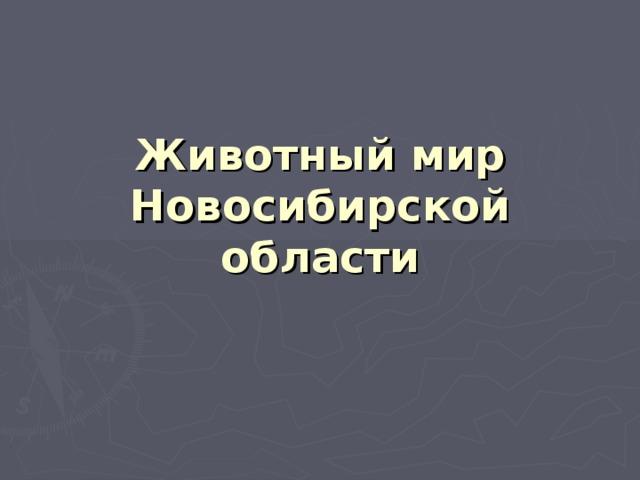 Животный мир Новосибирской области