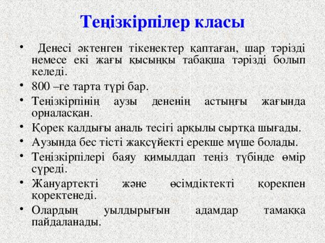 Теңізкірпілер класы