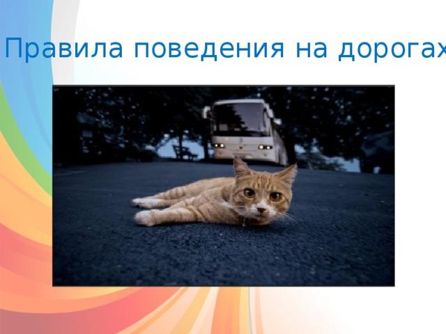 Правила поведения на дорогах