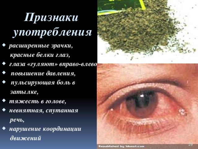 Признаки  употребления    расширенные зрачки,  красные белки глаз, глаза «гуляют» вправо-влево,  повышение давления,  пульсирующая боль в  затылке, тяжесть в голове, невнятная, спутанная  речь, нарушение координации  движений