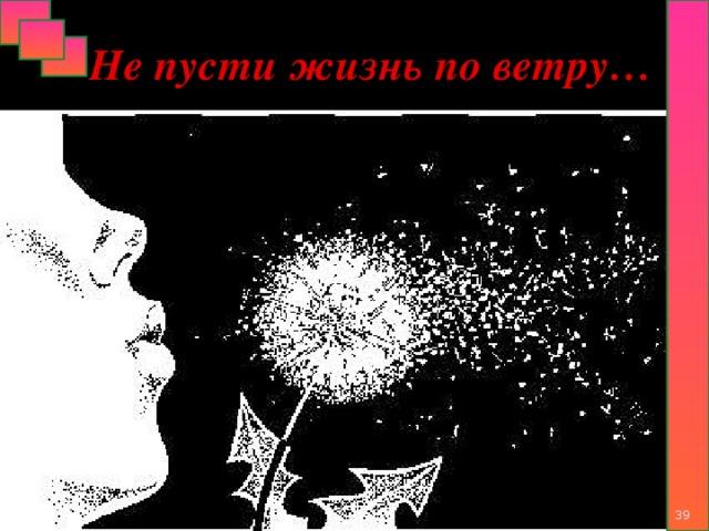 Не пусти жизнь по ветру…