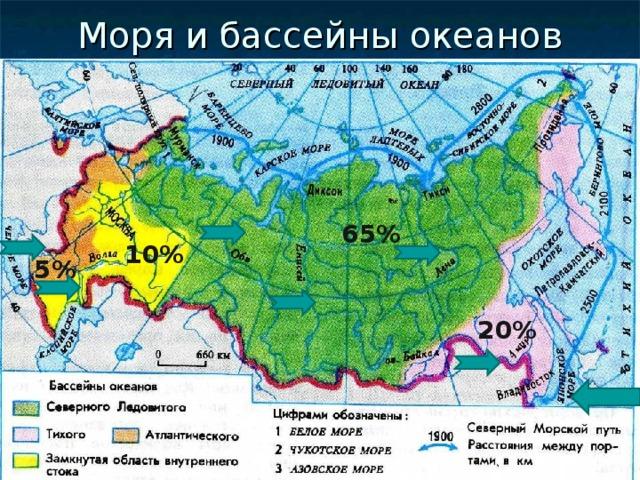 Моря и бассейны океанов 65% 10% 5% 20%