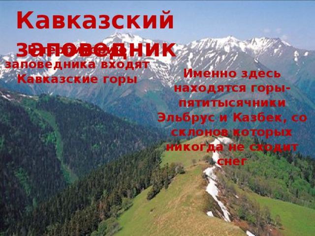 Кавказский заповедник В территорию заповедника входят Кавказские горы Именно здесь находятся горы-пятитысячники Эльбрус и Казбек, со склонов которых никогда не сходит снег