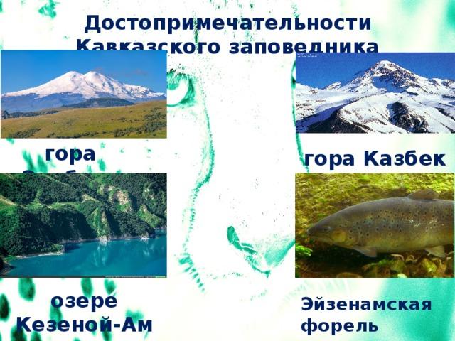 Достопримечательности Кавказского заповедника гора Эльбрус гора Казбек озере Кезеной-Ам Эйзенамская форель