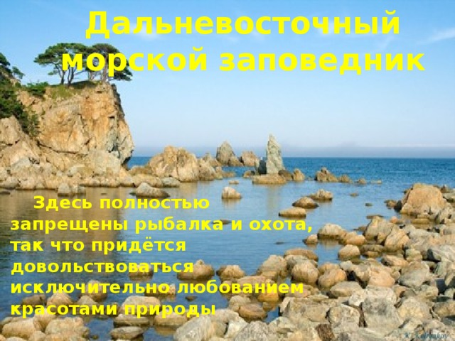 Дальневосточный морской заповедник  Здесь полностью запрещены рыбалка и охота, так что придётся довольствоваться исключительно любованием красотами природы