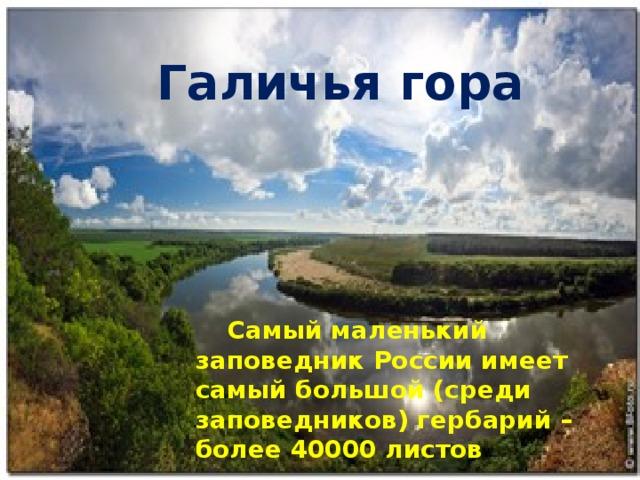 Галичья гора  Самый маленький заповедник России имеет самый большой (среди заповедников) гербарий – более 40000 листов