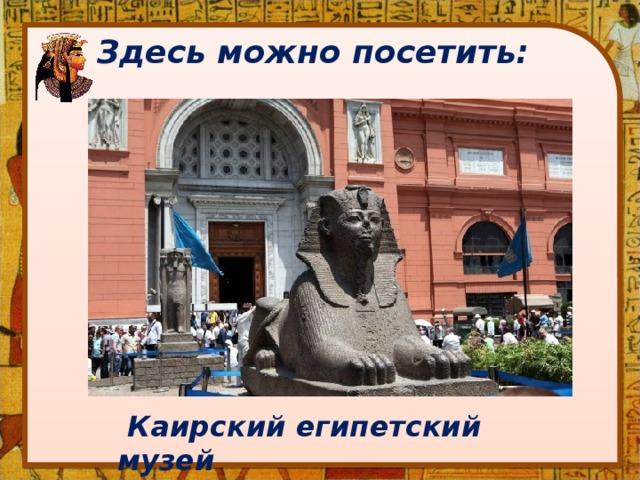 Здесь можно посетить:  Каирский египетский музей