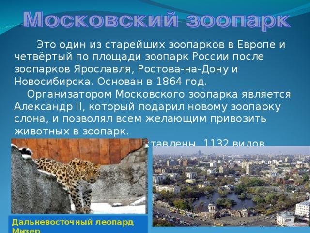 Это один из старейших зоопарков в Европе и четвёртый по площади зоопарк России после зоопарков Ярославля, Ростова-на-Дону и Новосибирска. Основан в 1864 год.  Организатором Московского зоопарка является Александр II, который подарил новому зоопарку слона, и позволял всем желающим привозить животных в зоопарк.  В его коллекции представлены 1132 видов животных. Дальневосточный леопард Мизер