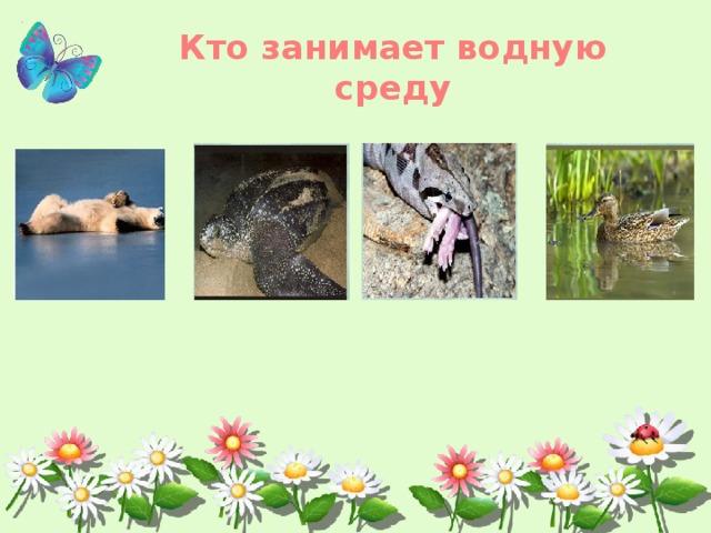 Кто занимает водную среду