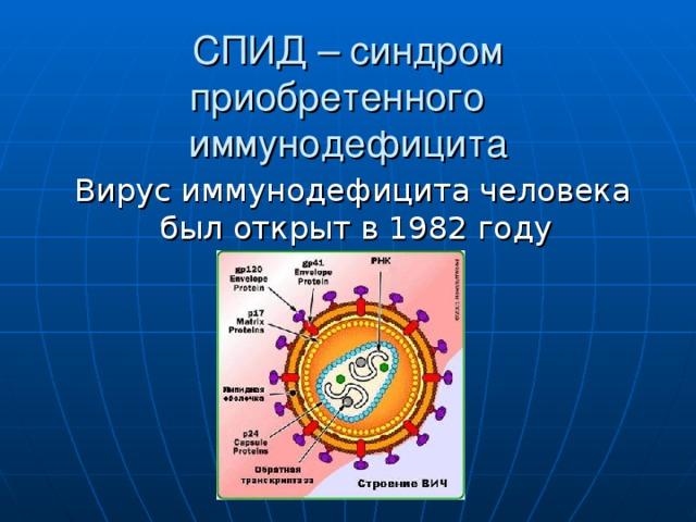 СПИД – синдром приобретенного иммунодефицита  Вирус иммунодефицита человека был открыт в 1982 году