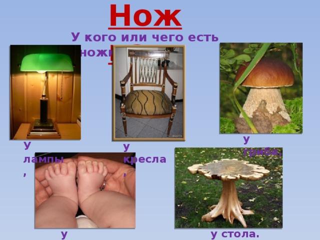 Ножка У кого или чего есть «ножка»? у гриба, У лампы, у кресла, у малыша, у стола.