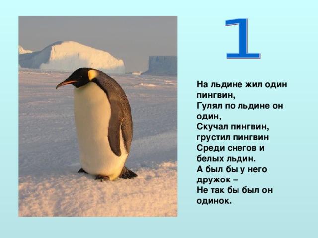 На льдине жил один пингвин, Гулял по льдине он один, Скучал пингвин, грустил пингвин Среди снегов и белых льдин. А был бы у него дружок – Не так бы был он одинок.