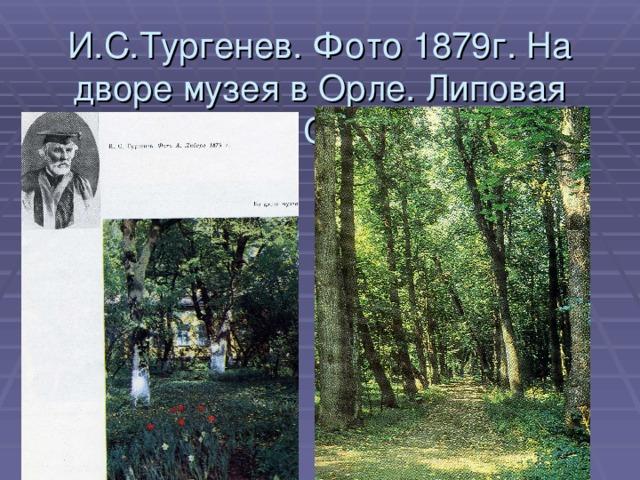 И.С.Тургенев. Фото 1879г. На дворе музея в Орле. Липовая аллея в Спасском.
