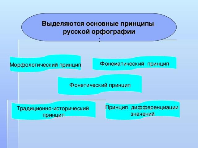 Выделяются основные принципы русской орфографии :  Морфологический принцип   Фонематический принцип   Фонетический принцип  Принцип дифференциации значений Традиционно-исторический принцип