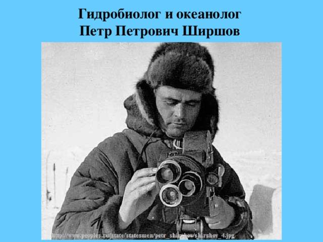 Гидробиолог и океанолог  Петр Петрович Ширшов