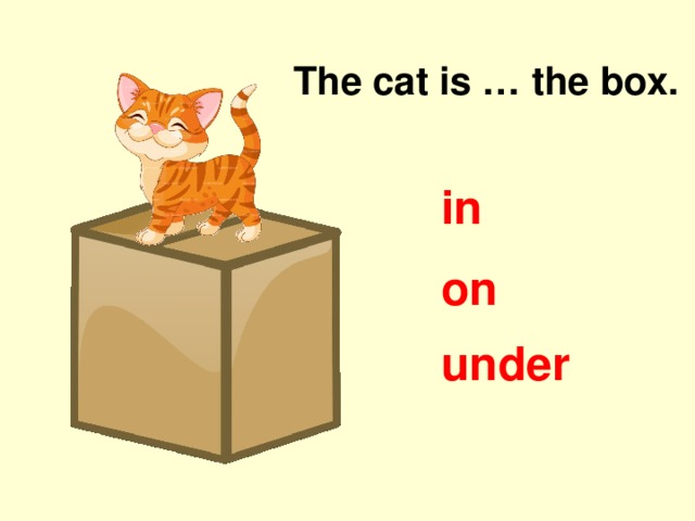 The cat is … the box. in on under
