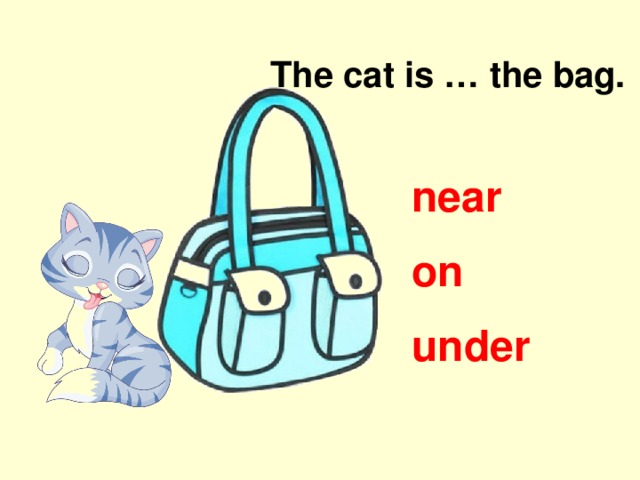 The cat is … the bag. near on under