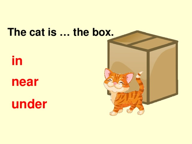 The cat is … the box. in near under