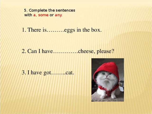 5. Complete the sentences with a, some or any.