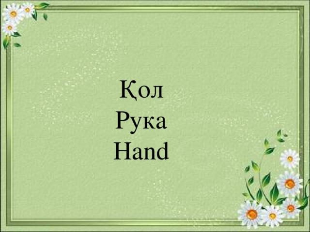 Қол Рука Hand