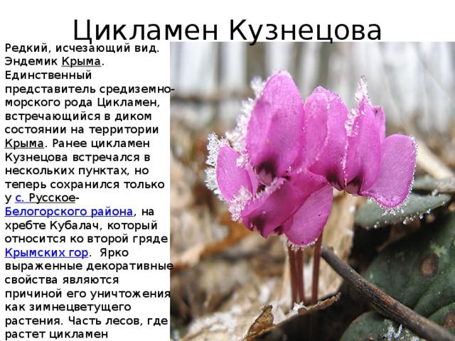 Доклад на тему редкие растения 7102