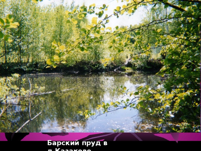Барский пруд в д.Казаково